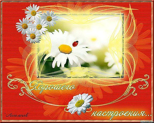 Прикольні побажання на день народження чоловіку (українською мовою)